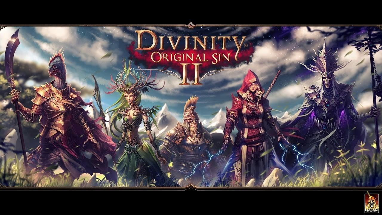 Divinity Original Sin 2 черный кот