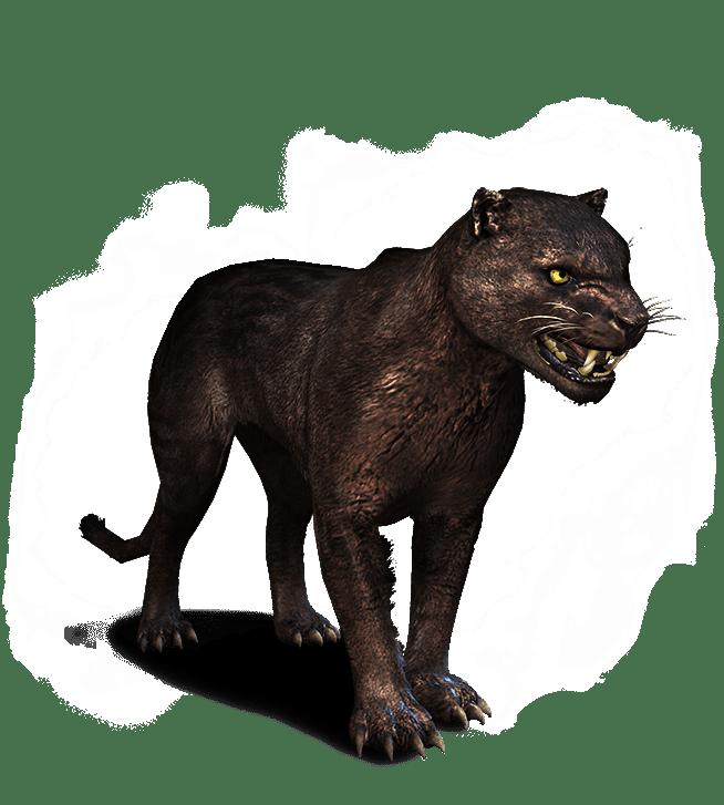 Бестиарий в игре Ведьмак 3 - все монстры
