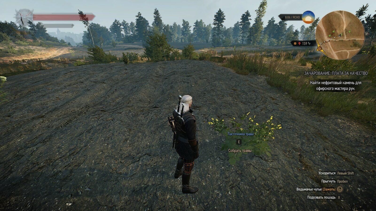 Где найти траву зубровку в Ведьмак 3?